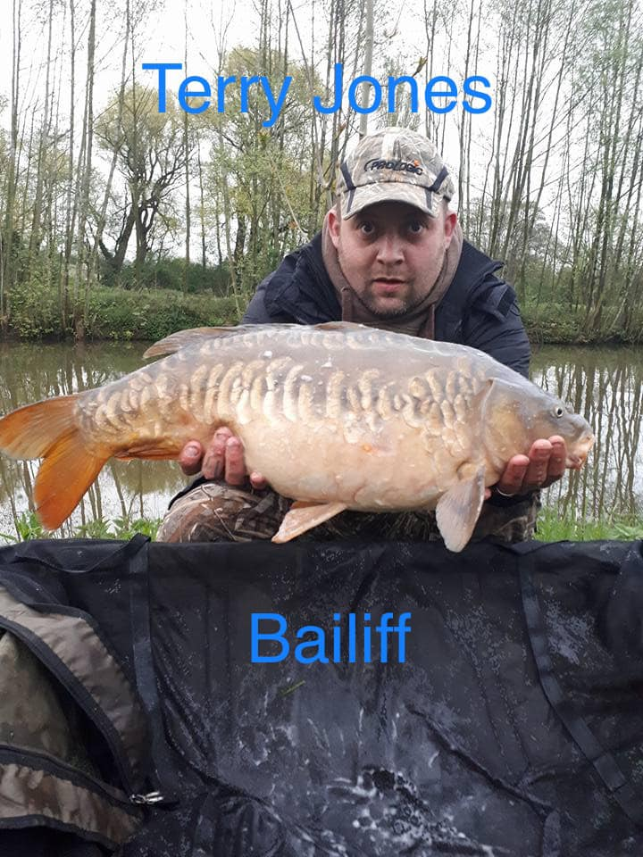 Elton Bailiff Terry